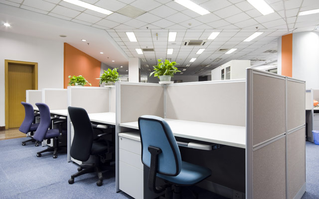 Zelenje v pisarni